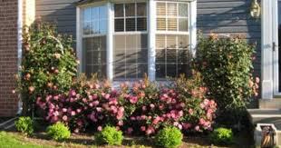 bay window landscaping