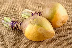 rutabaga vs potato danettemay