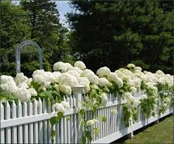 Design Chic Garden Fence Garden Dream Garden