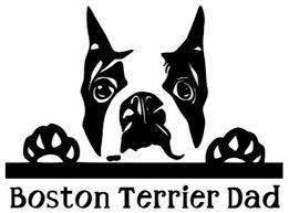 Boston Terrier Parent Window Decal Etsy