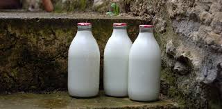 fresh milk delivered in glass bottles