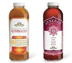 kombucha wonder tonic or slimy sludge
