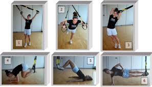 introduction to trx suspension