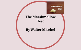 The Marshmellow Test by Ava Snyder