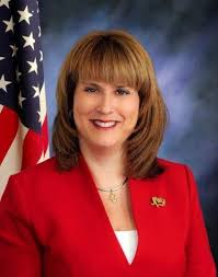 Election 2018 candidate: Christine Johnson, DeKalb County Treasurer   Daily  Chronicle