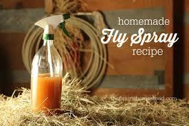 homemade fly spray recipe the prairie