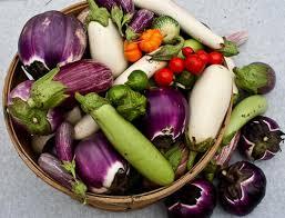 best practices food gardening