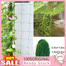 Yak Yy Fruit Vegetable Flower Vine Plants Climbing Net Garden Cucumber Trellis Netting Shopee Philippines