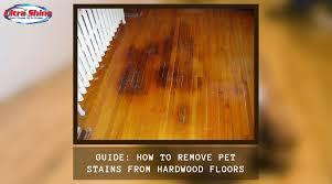 pet sns from hardwood floors