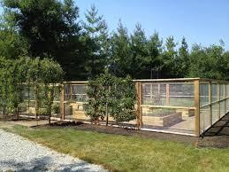 Garden Ornament Dirt Simple Fenced Vegetable Garden Backyard Vegetable Gardens Backyard Fences