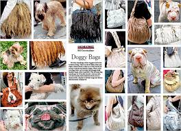 Doggy Bags - The New York Times