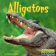 Alligators by Adele D. Richardson; Adele Richardson 9780736843263 | eBay