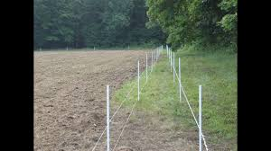 Protecting Your Food Plots From Deer Damage Youtube