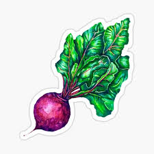 Vegetable Stickers Redbubble