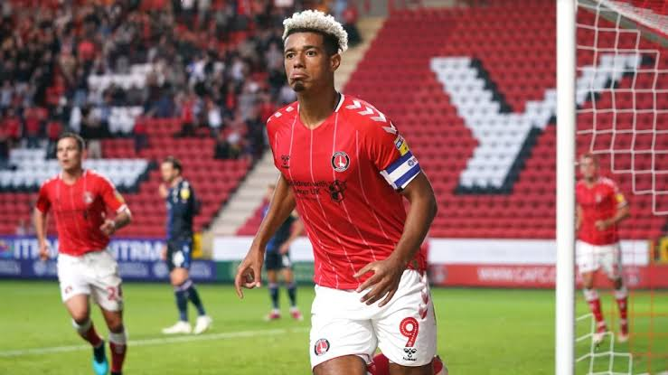 Image result for lyle taylor""