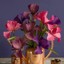 Crepe Paper Iris Blooms Lia Griffith