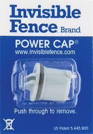Invisible Fence Brand The Invisible Fence Brand