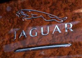 Jaguar Chrome Car Metal Decal Emblem 60mm Xke Mk2 Xk120 Xj8 Xk8 F Pace Xf S Type Ebay