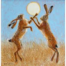 boxing hares harvest moon