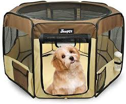 14 Best Portable Dog Fences For Camping Easy Carry Setup