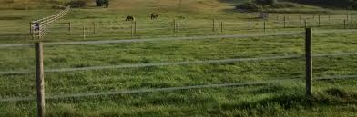 Reliable Electric Fencing For Horses Farm Jenny