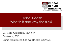 PPT - Global Health What is it and why the fuss? PowerPoint Presentation -  ID:3726026