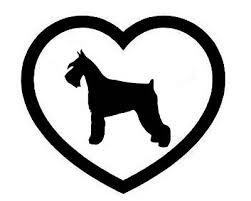 Miniature Schnauzer Heart Vinyl Decal Sticker Dog Breed Choose Color Size Ebay