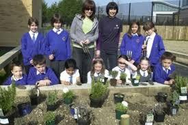 Pupils' herb garden gets firm boost - Berkshire Live
