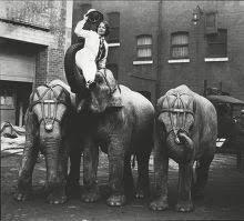 Adele Nelson Bertram Mills Circus Her Baby Editorial Stock Photo ...