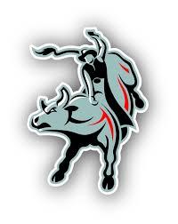 Pbr Bull Riding Vinyl Die Cut Decal Sticker 4 Sizes