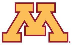 Amazon Com University Of Minnesota Gophers Logo Clear Vinyl Decal Car Truck Sticker Kitchen Dining