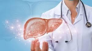 Gan nhiễm mỡ là gì? Cách điều trị gan nhiễm mỡ tốt trong dịp corona