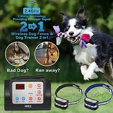 40 Best Wireless Dog Fences Reviewed In 2020 Dogstruggles