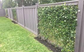 Blog Trex Fencing The Composite Alternative To Wood Vinyl Backyard Fences Vine Fence Garden Vines