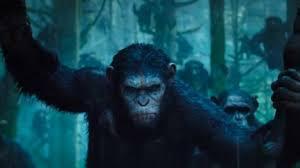 Apes Revolution Il Pianeta Delle Scimmie film stasera in tv trama ...