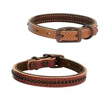 weaver leather outlaw dog collar 5 8