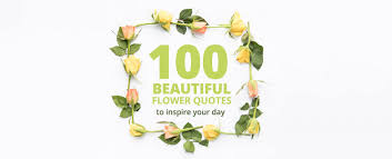 beautiful flower quotes to inspire your day sa florist