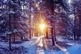 خلفيات شمس فصل الشتاء و الثلوج عالية الوضوح 39
