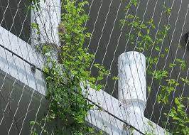 Aisi316 X Tend Wire Rope Plant Trellis Stainless Steel Wire For Climbing Plants