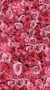 خلفيات ورد اجمل الكروت التي تحمل الورود احساس ناعم