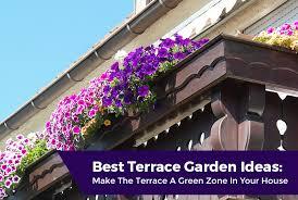 best terrace gardening ideas in kerala