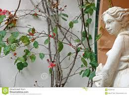 La Statua Grigia Del Gesso Il Giardino è Decorata Nella Ragazza D'annata  Della Statua Di Stile Europeo Fotografia Stock - Immagine di stile, pietra:  92249122