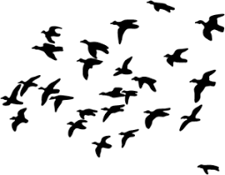 Duck Hunting Decal Stob 3 Window Stickers Hunting Decal Duck Hunting Decals Animal Silhouette