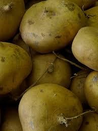nutritional benefits of jicama