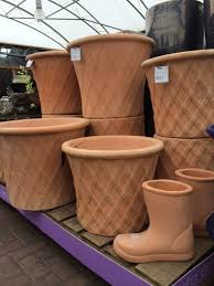 containers at langlands garden centres