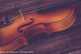 Violinist Gift Violin Gift Music Still Life Art Violin Wall Etsy