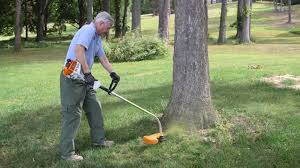 Best String Trimmer Buying Guide Consumer Reports