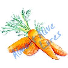 Carrots Garden Vegetables Vinyl Decal Auto Car Truck Home Rv Atv Boat Cell Cup Ebay