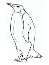 Pinguin Kleurplaten Gratis Kleurplaten Printen