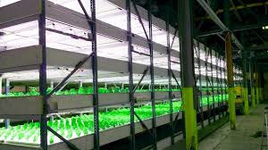 commercial led grow lights kits